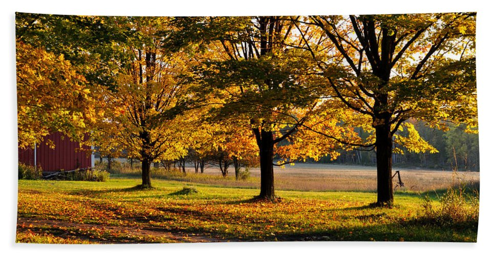 Fall Bath Sheet featuring the photograph Three Sisters by Tim Nyberg