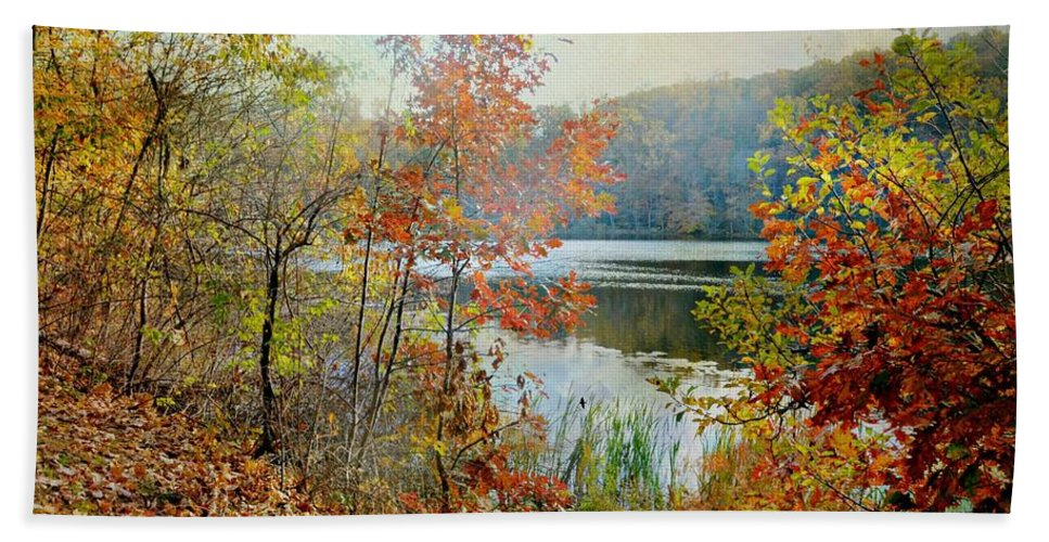Landscape Bath Sheet featuring the photograph Wampus Pond by Diana Angstadt