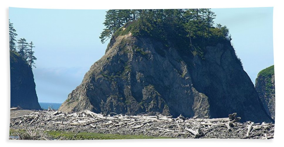 Ocean Bath Sheet featuring the photograph Washington Coast by Diane Greco-Lesser