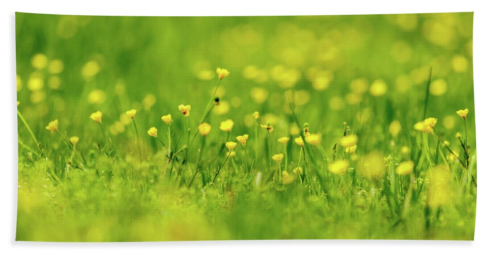 Biology Bath Sheet featuring the photograph Wildflowers by Bryan Pollard