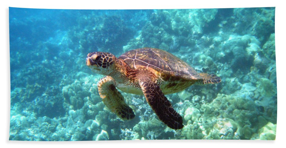 Sea Turtle Bath Sheet featuring the photograph Young One by Angie Hamlin