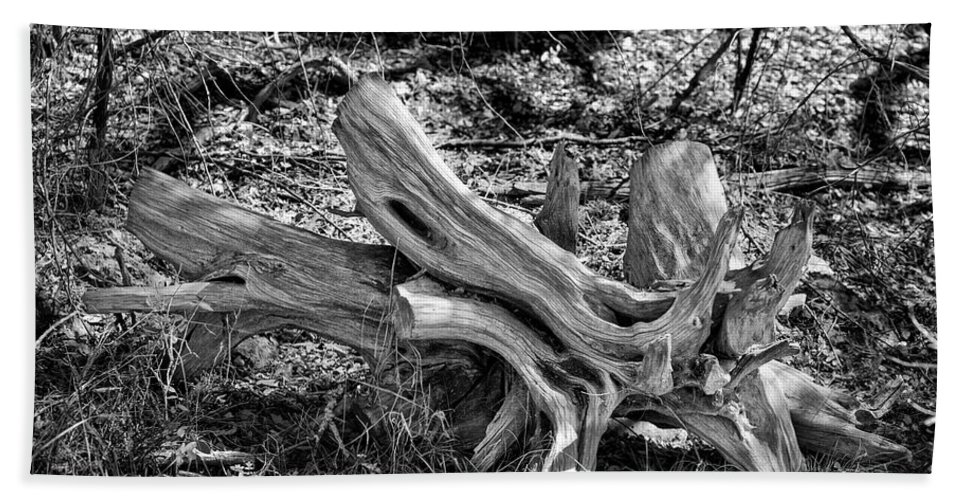 Texas; Hill Country; Dead Tree; Deadfall Tree; Stump; B/w Photo; Black And White Photograph; Black And White Photography; Black And White Pictures; Bw Photo Bath Sheet featuring the photograph 201702250-005k Cedar Stumps 2x3 by Alan Tonnesen
