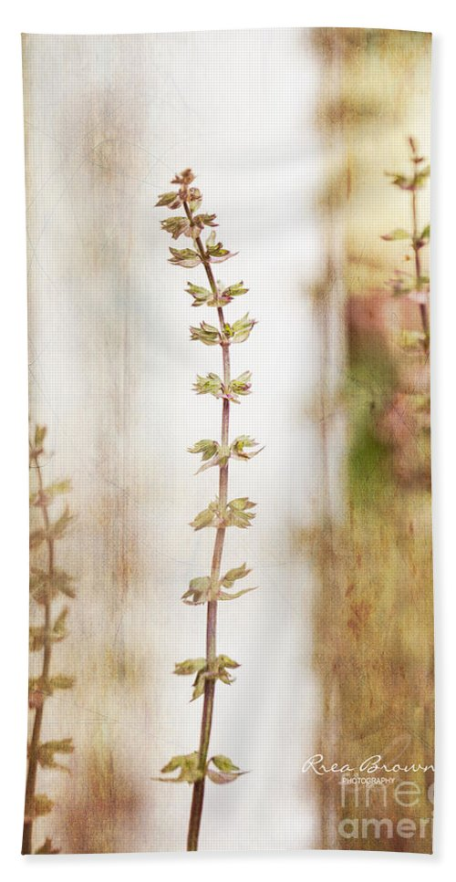 Flower Hand Towel featuring the photograph 2991 by Rrea Brown