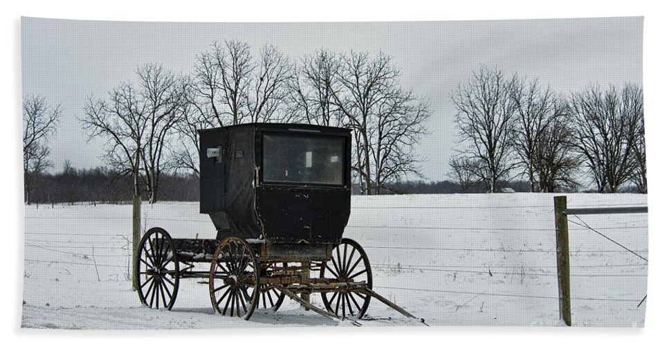 Amish Hand Towel featuring the photograph Amish Buggy Near Shipshe by David Arment