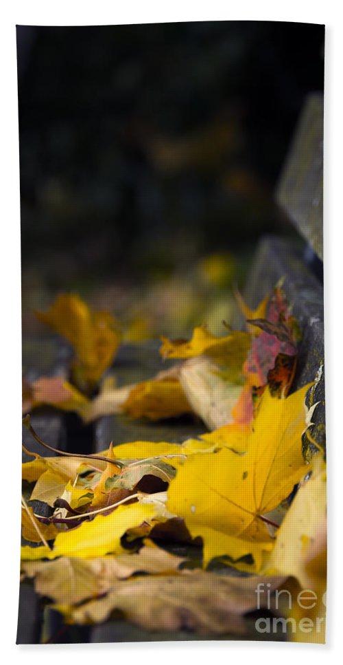 Svetlana Sewell Bath Sheet featuring the photograph Autumn Leaves by Svetlana Sewell