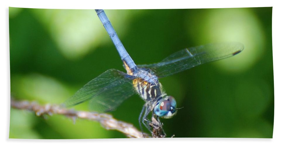 Dragonfly Bath Sheet featuring the photograph Dragon Fly by Rob Hans
