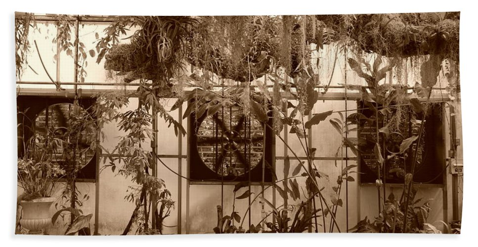 Vent Bath Towel featuring the photograph 3 Fans And Vines by Rob Hans