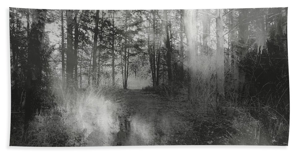 Wolf Creek Bath Sheet featuring the photograph Into The Woods by Theresa Campbell