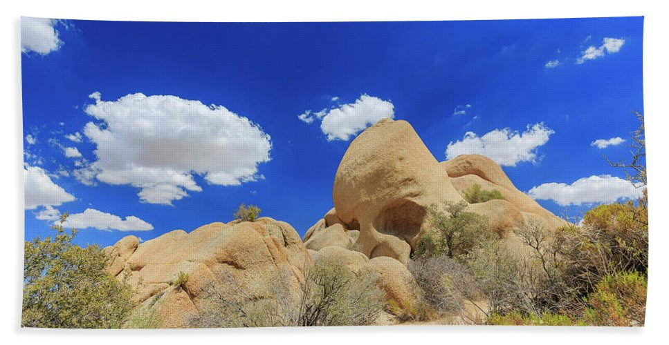 Joshua Tree National Park Hand Towel featuring the photograph Landscape In Joshua Tree National Park by Chon Kit Leong