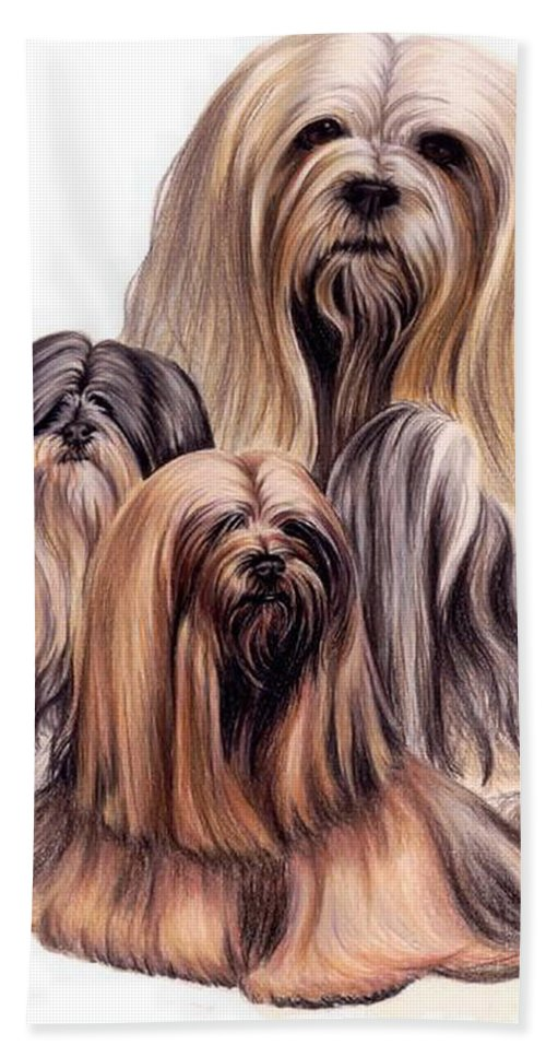 Purebred Bath Sheet featuring the drawing Lhasa Apso Triple by Barbara Keith
