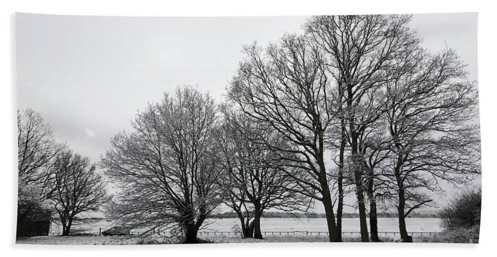 Snow On Epsom Downs Surrey Uk Tree England Britain British English Landscape Snowy Winter Frost Trees White Falling Snowing Branches Hand Towel featuring the photograph Snow On Epsom Downs Surrey Uk by Julia Gavin
