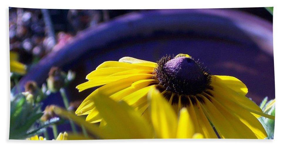 Sundaisy Hand Towel featuring the photograph Sun Glory Series by Marika Evanson
