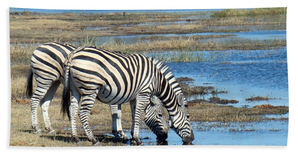 Wild Hand Towel featuring the photograph Zebra by FL collection