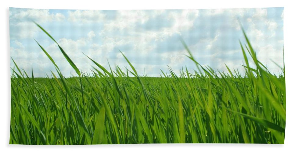 4 Nature Grass Hand Towel featuring the digital art 38744 Nature Grass by Mery Moon