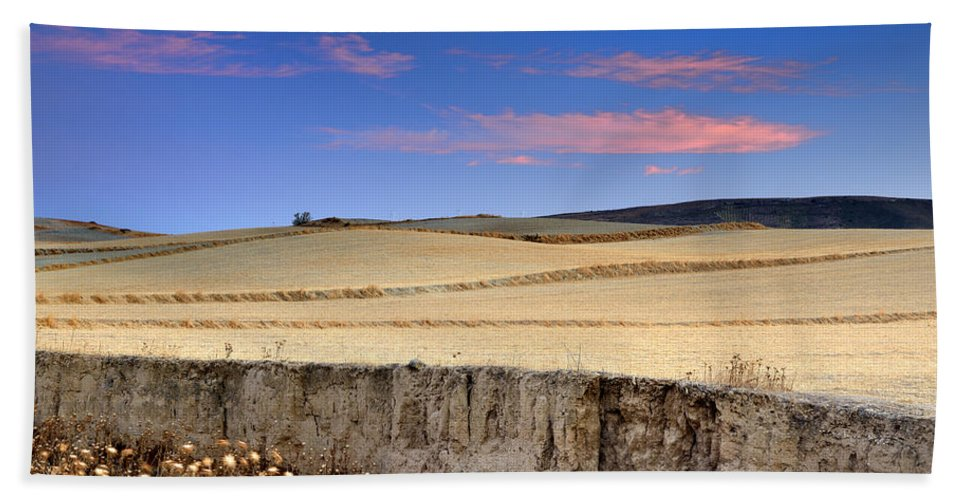 Plants Hand Towel featuring the photograph Cereal Fields by Guido Montanes Castillo