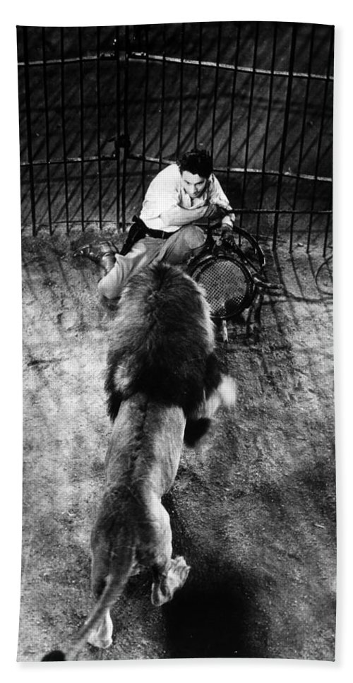 1930 Bath Sheet featuring the photograph Lion Tamer, 1930s by Granger