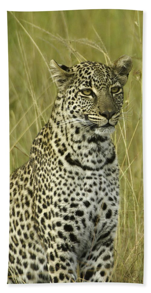Africa Hand Towel featuring the photograph Lovely Leopard by Michele Burgess