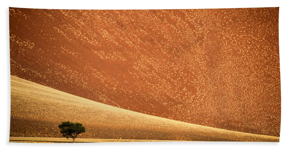 Photography Bath Sheet featuring the photograph Sand Dune, Sossusvlei, Namib Desert by Panoramic Images