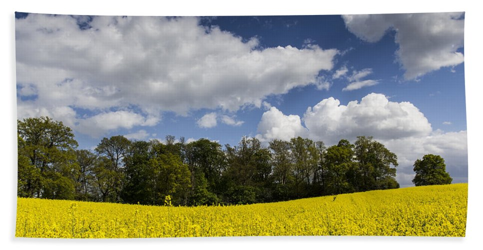 Oil Seed Rape Bath Sheet featuring the photograph The Farm In Summer by David Pyatt