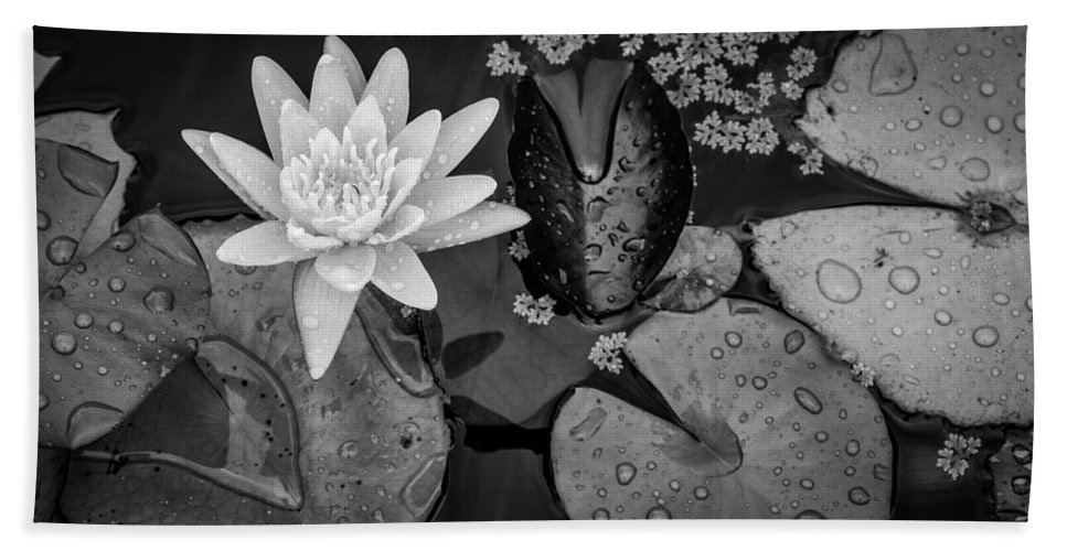 Lily Pad Hand Towel featuring the photograph 4475- Lily Pads Black And White by David Lange