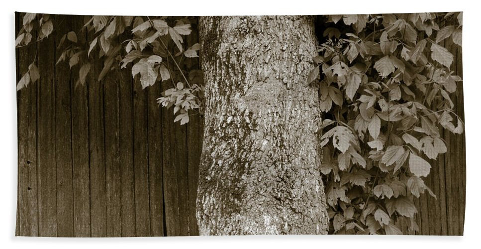 Allen Hand Towel featuring the photograph Tennessee Country by Avril Christophe