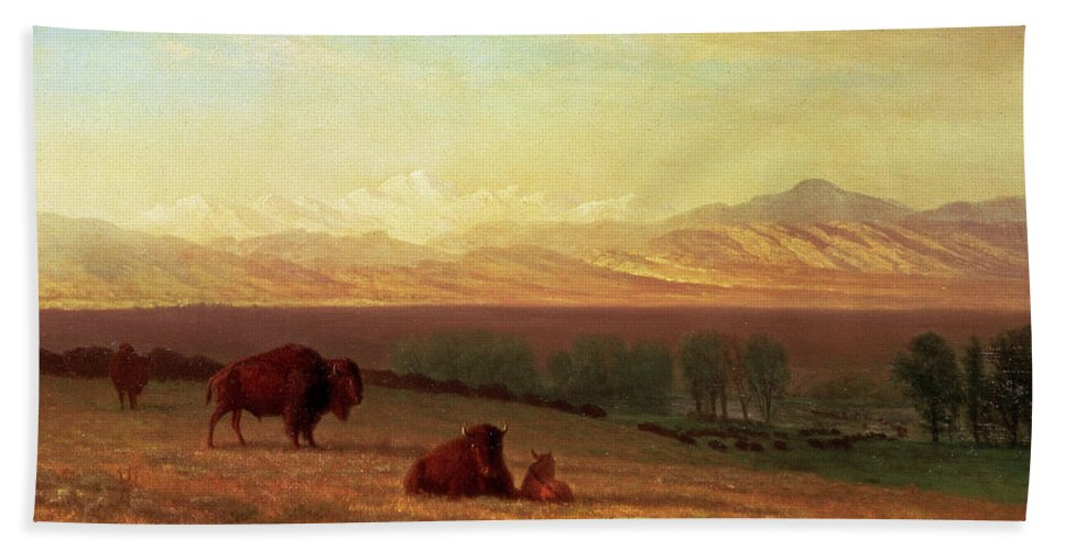 Albert Bierstadt Hand Towel featuring the painting Buffalo On The Plains by Albert Bierstadt