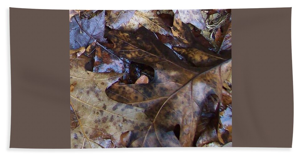 Fall Color Leaf Bath Sheet featuring the photograph Colors Of The Fall by Wolfgang Schweizer