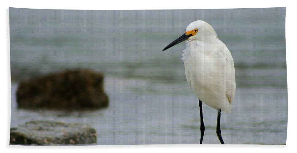Hand Towel featuring the photograph Egret by Angela Rath