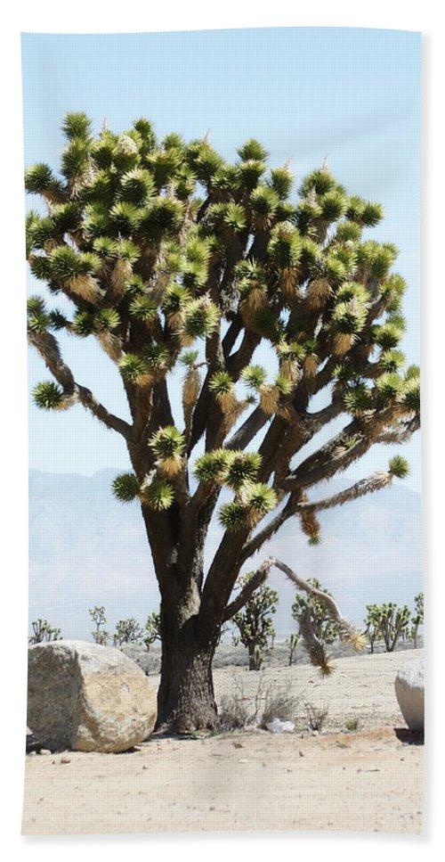 Desert Life Bath Sheet featuring the photograph Joshua Tree by Gravityx9 Designs