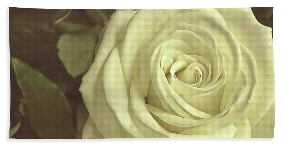 Rose Bath Sheet featuring the photograph Timeless Rose by JAMART Photography