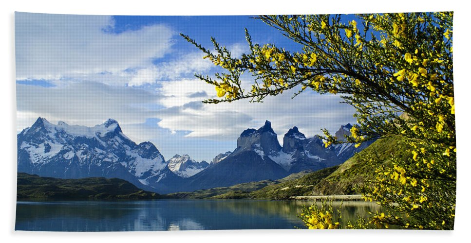 Patagonia Bath Towel featuring the photograph Springtime in Torres del Paine by Michele Burgess