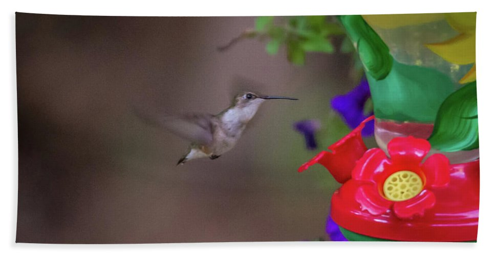 Flower Hand Towel featuring the photograph Hummingbird Found In Wild Nature On Sunny Day by Alex Grichenko