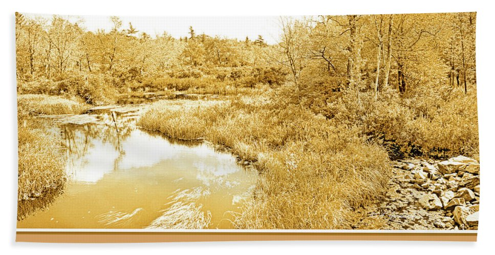 Color Hand Towel featuring the photograph Stream In Autumn, Pocono Mountains, Pennsylvania by A Gurmankin