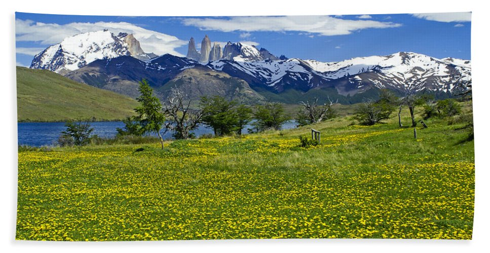 Patagonia Hand Towel featuring the photograph Springtime In Torres Del Paine by Michele Burgess