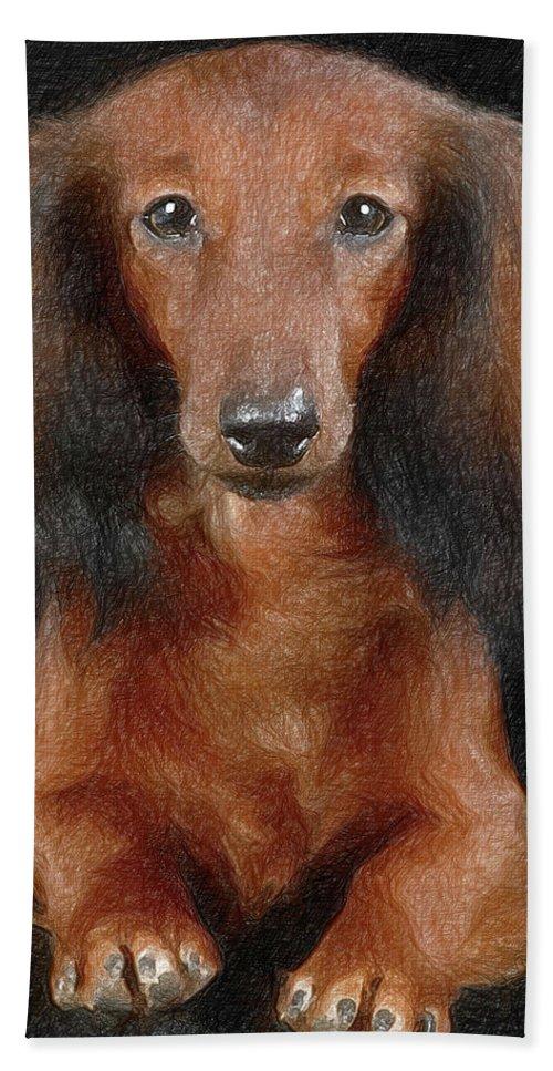 Animal Bath Sheet featuring the digital art Dog by Anna J Davis