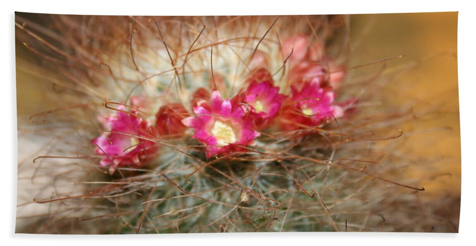 Flowers Nature Hand Towel featuring the photograph A Beautiful Blur by Linda Sannuti