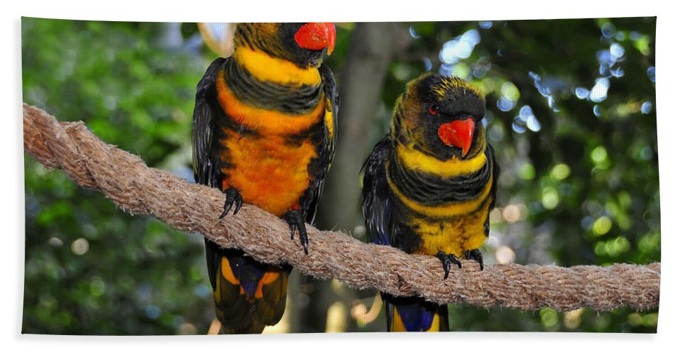 Pair Hand Towel featuring the photograph A Beautiful Pair by David Lee Thompson