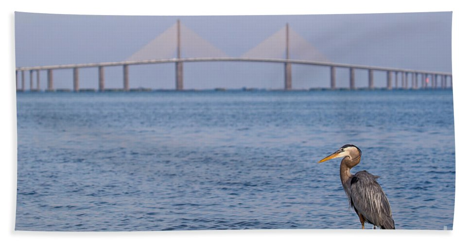 Sunshine Skyway Bridge Florida Tampa Bay St. Pete St Pete St. Petersburg Great Blue Heron Fort Desoto De Soto Park Bird Dusk Blue Hour Beach Hand Towel featuring the photograph A Bird And A Bridge by Karl Greeson