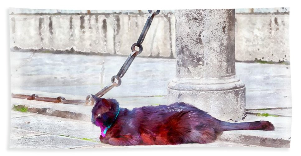 Black; Cat; Street; Road; Alley; Animal; Domestic Animal; Domestic Cat; Collar; Blue; Venice; Italy; Europe; Wonderful; Beautiful; Wild; Attentively; Nature; Naturally; Grey; Stone; Chain; Wall; Sidewalk; Eyes; Background Hand Towel featuring the digital art A Black Cat With A Blue-and-pink Collar by Gina Koch
