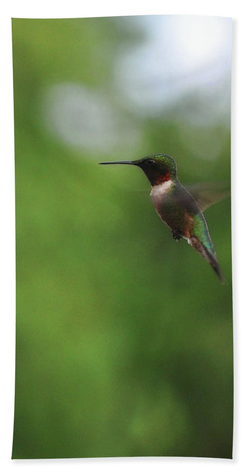 Bird Bath Sheet featuring the photograph A Blur by JAMART Photography