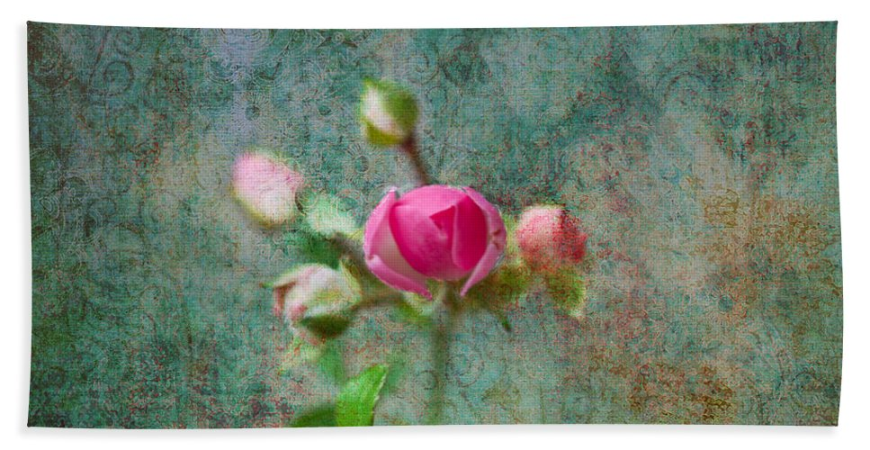 Rose Hand Towel featuring the photograph A Bud - A Rose by Marie Jamieson