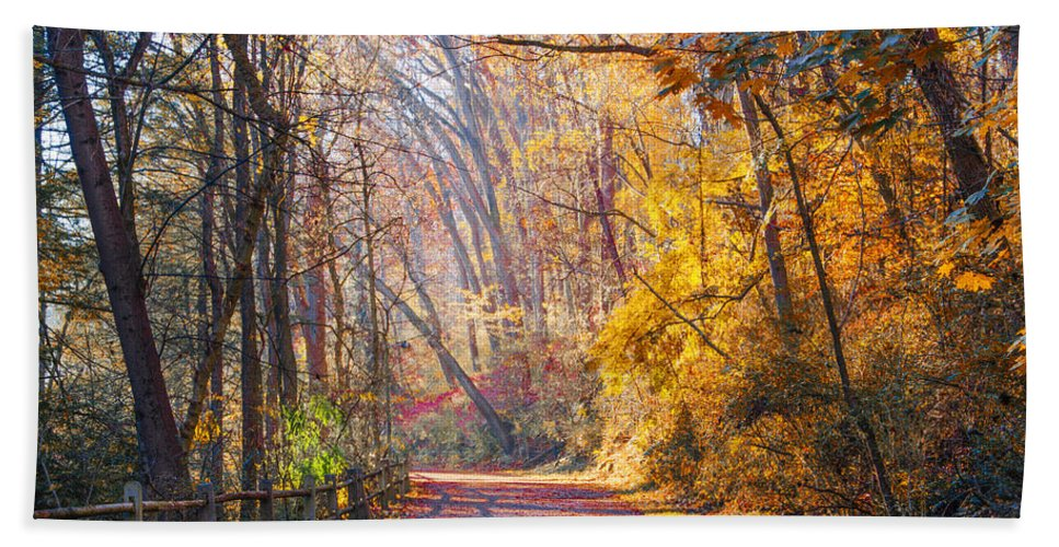 Change Hand Towel featuring the photograph A Change Of Seasons On Forbidden Drive by Bill Cannon