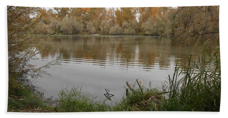 Landscape Bath Sheet featuring the photograph A Cloudy Day On The Pond by LKB Art and Photography