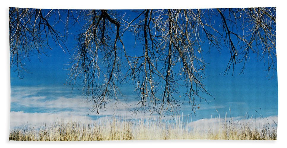 Nature Hand Towel featuring the photograph A Comfortable Place by Ric Bascobert