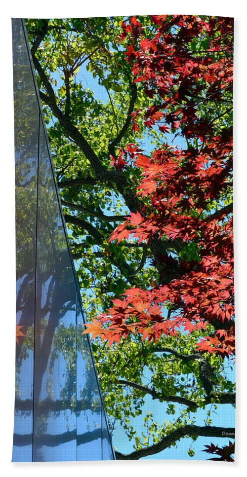 Trees Hand Towel featuring the photograph A Day Of Reflection by Donna Blackhall