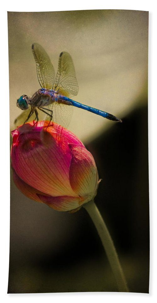 Lotus Hand Towel featuring the photograph A Dragonfly Rests Momentarily On A Lotus Bud by Chris Lord
