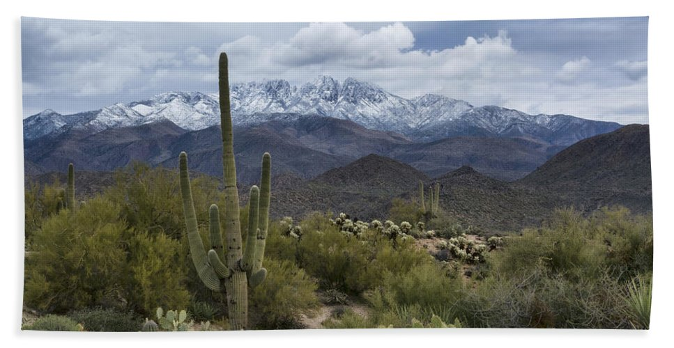 Arizona Bath Towel featuring the photograph A Dusting Of Snow In The Sonoran Desert by Saija Lehtonen