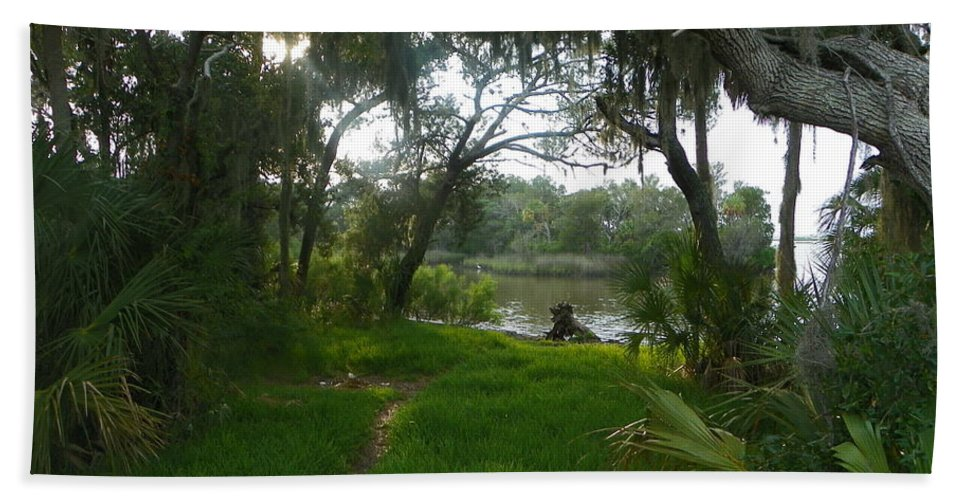 Trail Bath Sheet featuring the photograph A Florida Trail by Sheri McLeroy