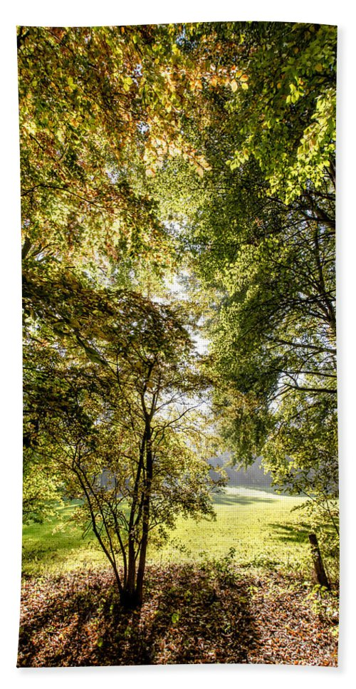 Forest Bath Sheet featuring the photograph a Forest part 2 by Alex Hiemstra
