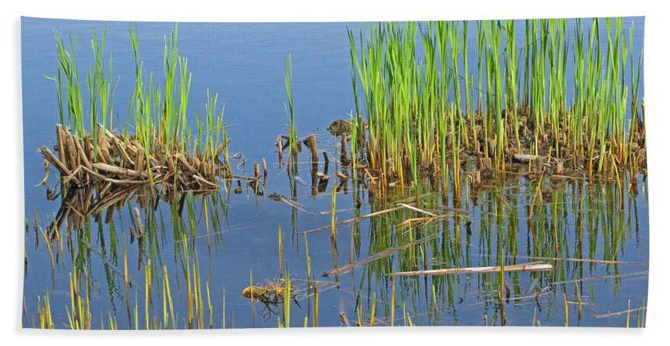 Spring Hand Towel featuring the photograph A Greening Marshland by Ann Horn